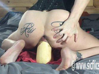 girl dildo fuck,dildo penetration,butplug penetration,butt plug fuck,monster vegetable rides,vegetable porn