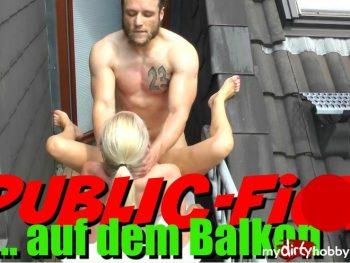 Public Fick